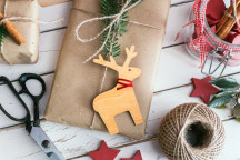 Best DIY Books for Making Christmas Gifts