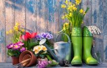 Gardening Anywhere